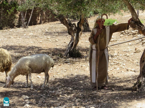 Shepherds also carried a staff, a stick of 5-6ft in length, often with a crook at the end. – Slide 5