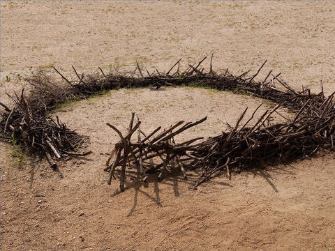 When travelling, a temporary sheepfold was built of thorn bushes or bowers (Ezekiel 34:14). – Slide 14