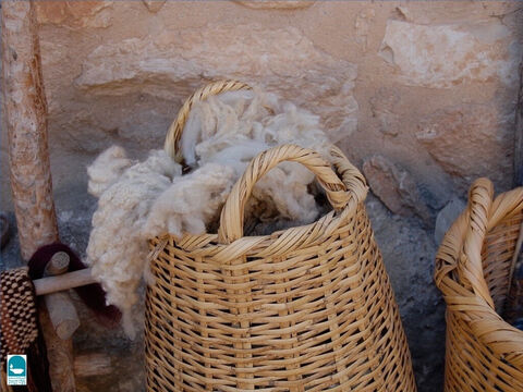 Sheep were valued for many products they produced. Wool was used to make many garments. Isaiah compares sins forgiven to the whiteness of wool (Isaiah 1:18). – Slide 22