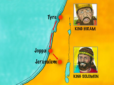 When Solomon became king he purchased expensive timber from King Hiram of Tyre. 30,000 workers were conscripted to work in shifts cutting trees in Lebanon. Large cedars and Juniper trees were then floated down the coast to Joppa. – Slide 3