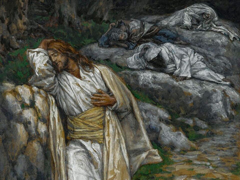 Jesus is deeply distressed. He tells Peter, James and John, 'My soul is overwhelmed with sorrow to the point of death. Stay here and keep watch with me.' <br/>Going on a little further, Jesus prays, 'My Father, if it is possible, may this cup be taken from me. Yet not as I will, but as you will.' <br/>(Matthew 26:38-39, Mark 14:34, Luke 22:41). <br/>My Soul is Sorrowful unto Death - James Tissot – Brooklyn Museum. – Slide 3