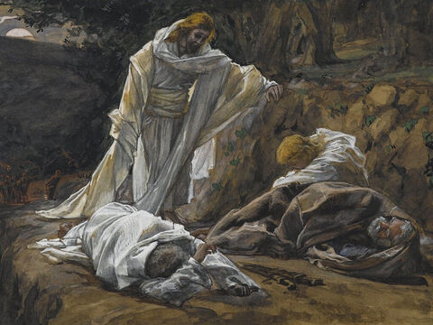 Jesus returns to find them asleep. 'Couldn't you keep watch with me for one hour?' he asks Peter. 'Watch and pray so that you will not fall into temptation. The spirit is willing, but the flesh is weak.' <br/>(Matthew 26:40-41, Mark 14:35-38). <br/>You Could Not Watch One Hour - James Tissot – Brooklyn Museum. – Slide 4