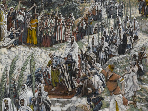 A very large crowd spreads their cloaks on the road, while others cut branches from the trees and spread them on the road. <br/>(Matthew 21:7-8, Mark 11:7-10, John 12:12-15). <br/>The Procession on the Mount of Olives - James Tissot - Brooklyn Museum. – Slide 3