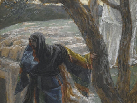 At this, she turned around and saw someone there, but she did not realise that it was Jesus. <br/>He asked her, 'Why are you crying? Who is it you are looking for?' <br/>Thinking He was the gardener, she said, 'Sir, if you have carried Him away, tell me where you have put Him, and I will get Him.' <br/>(John 20:14-15). <br/>Jesus Appears to Mary Magdalene - James Tissot - Brooklyn Museum. – Slide 7