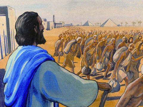 and then led over 2,000,000 Israelites out of Egypt … – Slide 35