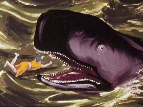 When Jonah ran away, he was swallowed by a large fish. – Slide 3