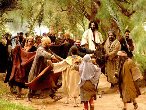 Jesus rode towards Jerusalem fulfilling what the prophet Zechariah had written (Zechariah 9:9): 'Rejoice greatly, Daughter Zion! Shout, Daughter Jerusalem! See, your king comes to you, righteous and victorious, lowly and riding on a donkey, on a colt, the foal of a donkey.' – Slide 10