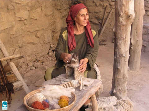 Wool was extensively used for clothing (Leviticus 13:47, Proverbs 27:26, Ezekiel 27:18) while for finer work flax was used. Sometimes flax and wool were woven together (Leviticus 19:19). – Slide 4