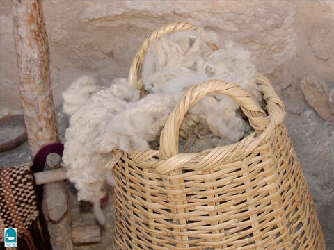 Fleeces were gathered from sheep to make wool. – Slide 6