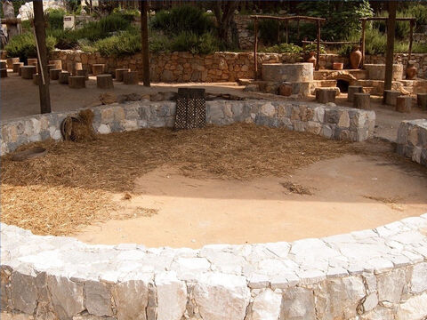 The threshing floor was a circular space of 30-50ft (10-18m). – Slide 16