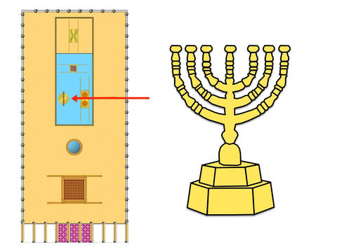 The menorah, or 'golden lampstand' stood at the left side of the Holy Place. It was hammered out of one piece of pure gold. The lampstand had seven branches, each designed like an almond tree, containing buds, blossoms and flowers. Seven lamps holding olive oil and wicks stood on top of the branches. The priests were instructed to keep the lamps burning continuously. – Slide 18