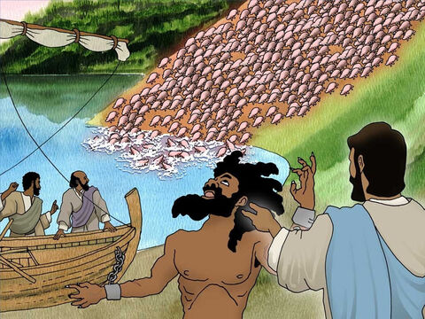 The demons went out of the wild man and into the herd of 2000 pigs. Immediately the pigs went crazy. They all rushed down the bank and drowned in the sea. The wild man was now set free of the terrible demons. – Slide 6