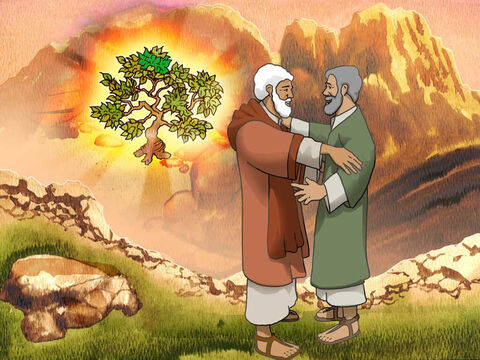 The Lord said to Moses' brother Aaron, 'Go to meet Moses in the wilderness.' So he went and met him at the mountain of God and kissed him. Moses told Aaron all the words of the Lord with which He had sent him, and all the signs that He had commanded him to do.' Exodus 4:27-28 (NASB) – Slide 8