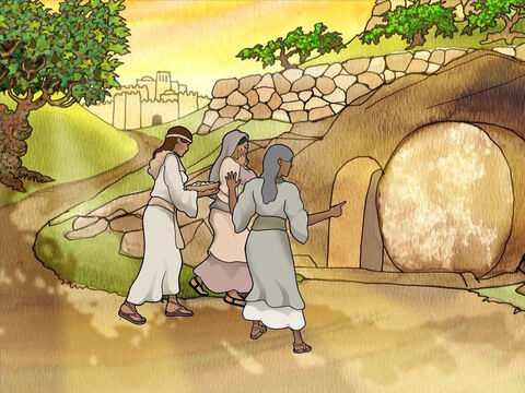 On Sunday the women went to Jesus' tomb to bring spices and honor Jesus' body. As they approached the tomb they wondered how they would get in. They found the stone rolled away. As they entered they saw Jesus' body was gone. (Mark 16:1-4) – Slide 4