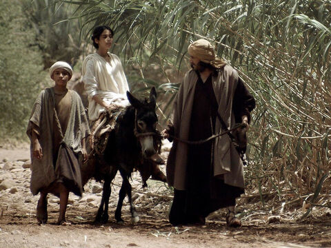 When Jesus was twelve years old, Mary and Joseph took Him to Jerusalem for the Festival of the Passover. – Slide 1