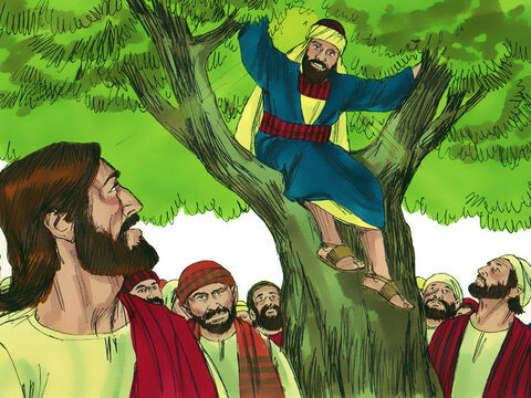 When Jesus got to the tree, He looked up and said, 'Zacchaeus, hurry down. Today is my day to be a guest in your home.' – Slide 5